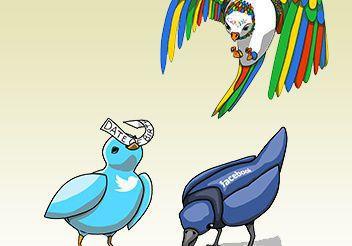 bird graphicWEB