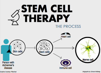 Stem cell infographic