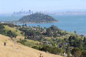 OVERLOOKING THE SAN Francisco Bay, Ring Mountain offers beautiful views and landscape and is more suited for beginning hikers.