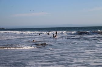 Children and Adults eagerly play in the surf as the beach day winds down.