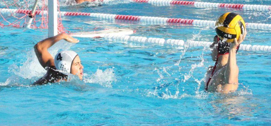 Boys' water polo drowned by Drake