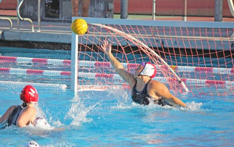 Girls water polo takes loss against Marin Catholic