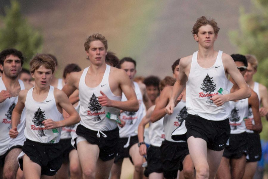 Boys' and girls' cross country dominate MCAL championships