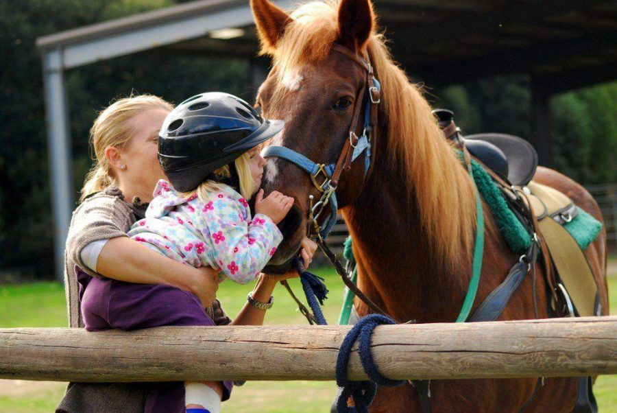 Students volunteer at horseback riding program for the disabled