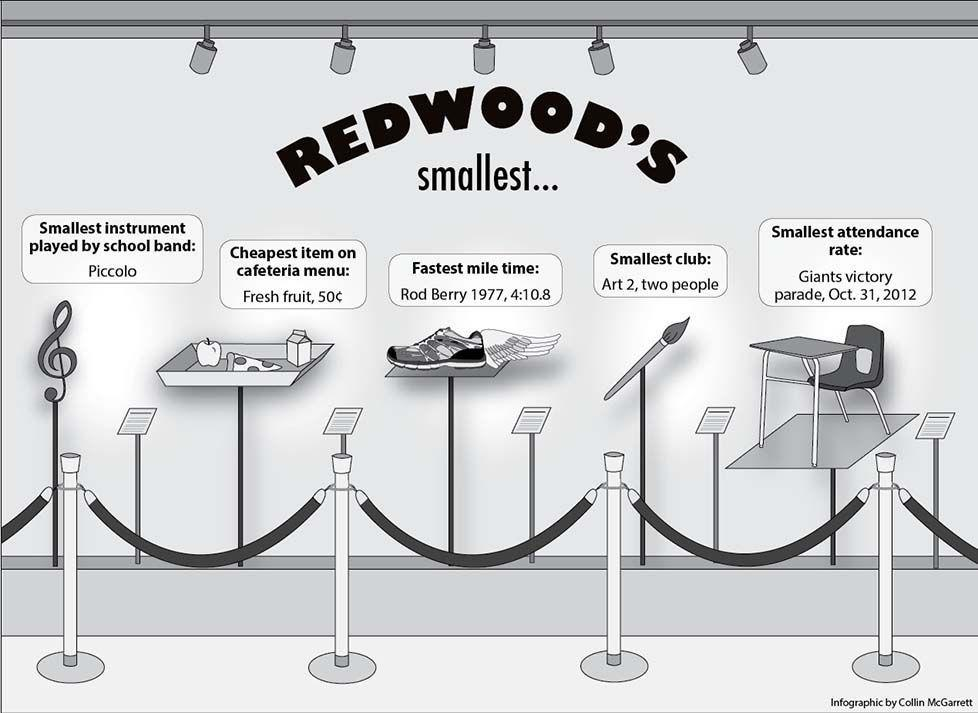 By the Numbers: Redwood's smallest