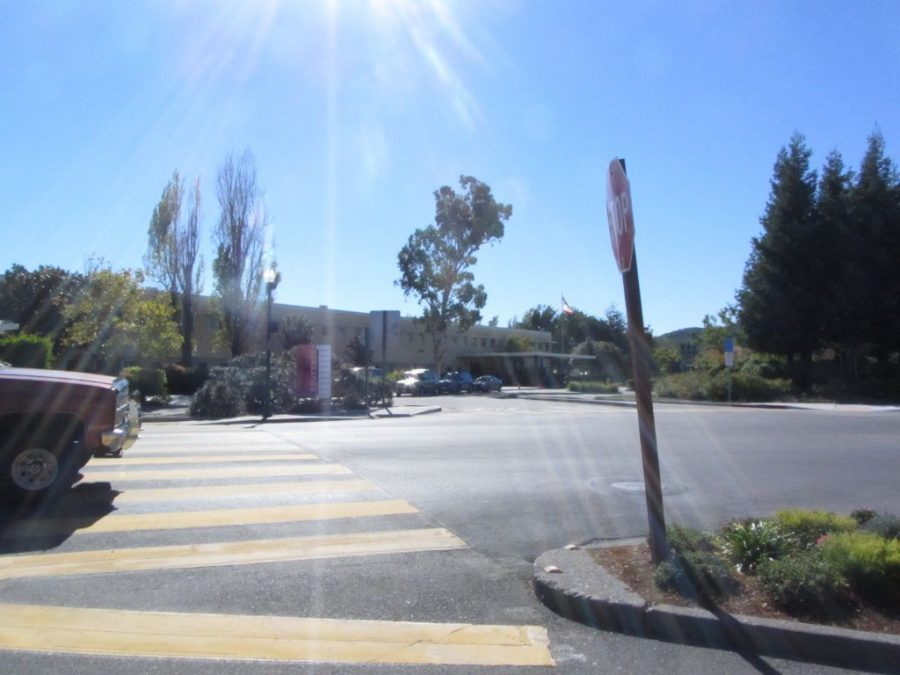 New traffic light installed on Doherty Drive