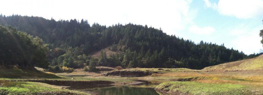 Marin may soon face water shortages