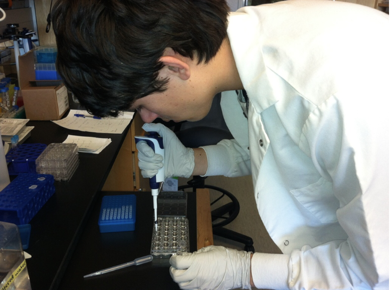 Sophomore, Matthew Moser conducts his experimental procedures on his adult and larval mosquito experiment.
