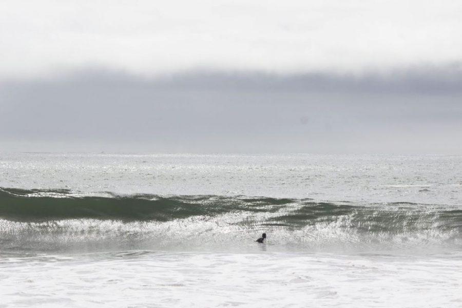 Hang loose: Best surf spots around Marin