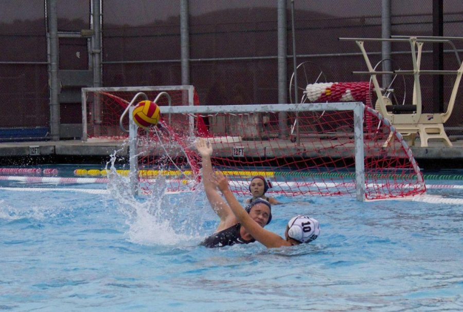 Girls' water polo loses to Marin Catholic