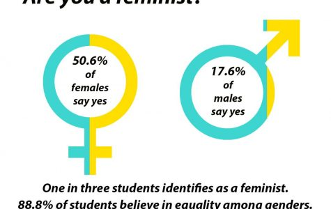 Feminism: Few students claim the label, most believe in its message