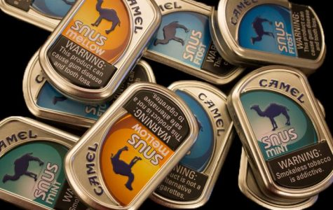 Packing a Lip: Smokeless tobacco and its health risks