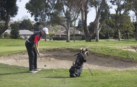 Boys' golf earns second in MCAL championship