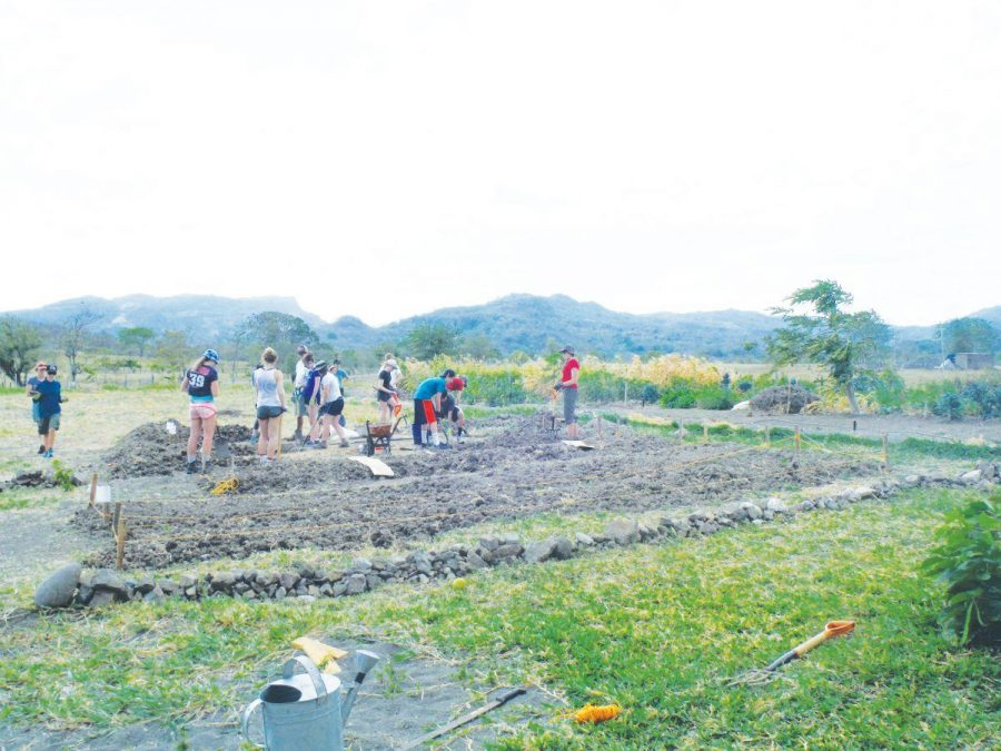Students double-dig garden beds at Clinica Verde to plant future crops.