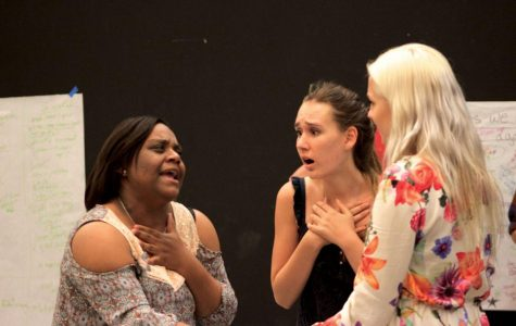 Outpouring of support for drama dept. in face of state bill