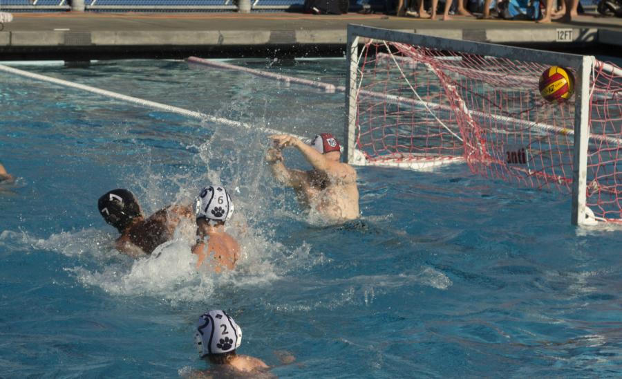 Boys' varsity water polo impresses in MCAL debut with 18-8 rout of Marin Catholic