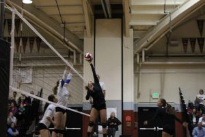 Junior setter Mari Molina dumps the ball over the net during the first set of Redwoods' NorCal semi-final game against Presentation on Nov, 28.