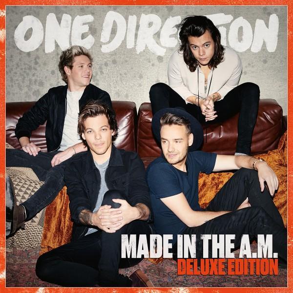"One Direction writes ""Perfect"" album before embarking on year-long hiatus"