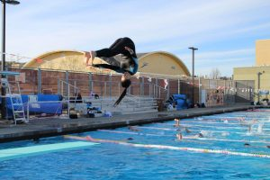 Springing off the board, junior Jenna Kieffer pratices pike position mid-flip. Kieffer joined the diving team because it requires less commitment than swim.