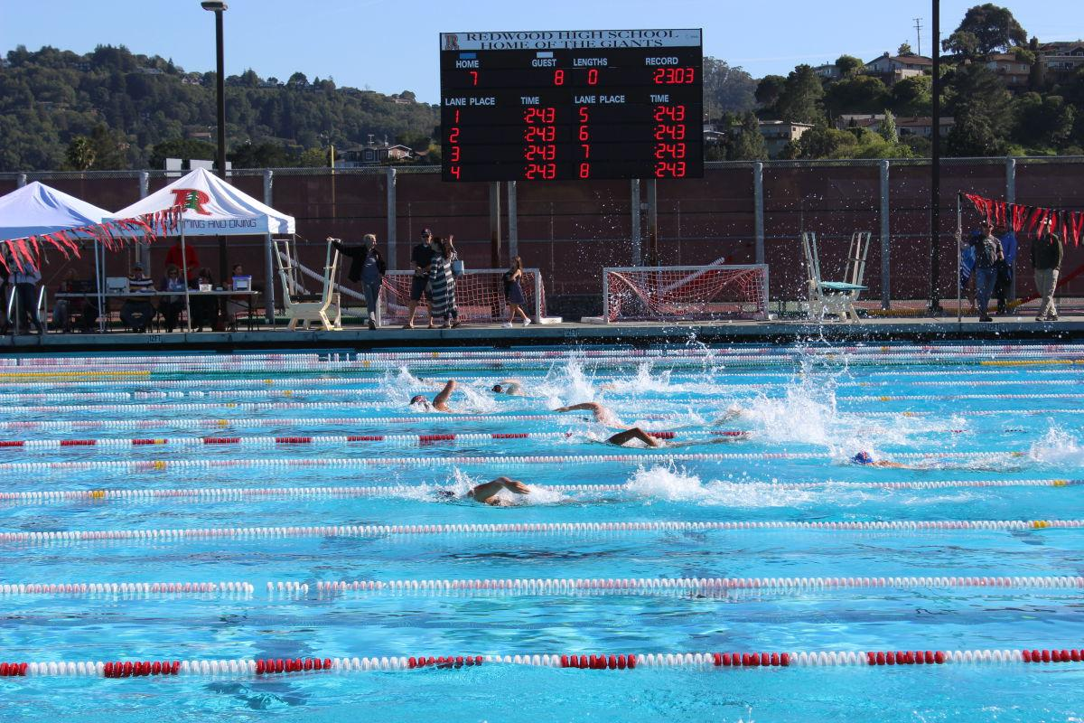 Swimming plunges into potentially promising season