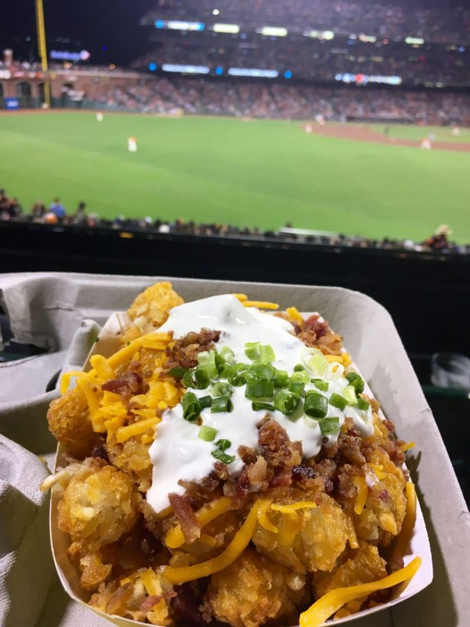 The tater tots are served with flavorful bacon, sour cream, cheddar cheese and chives, but are too crunchy and lack substantial filling.