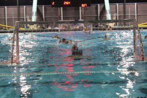 Players swim towards goal.