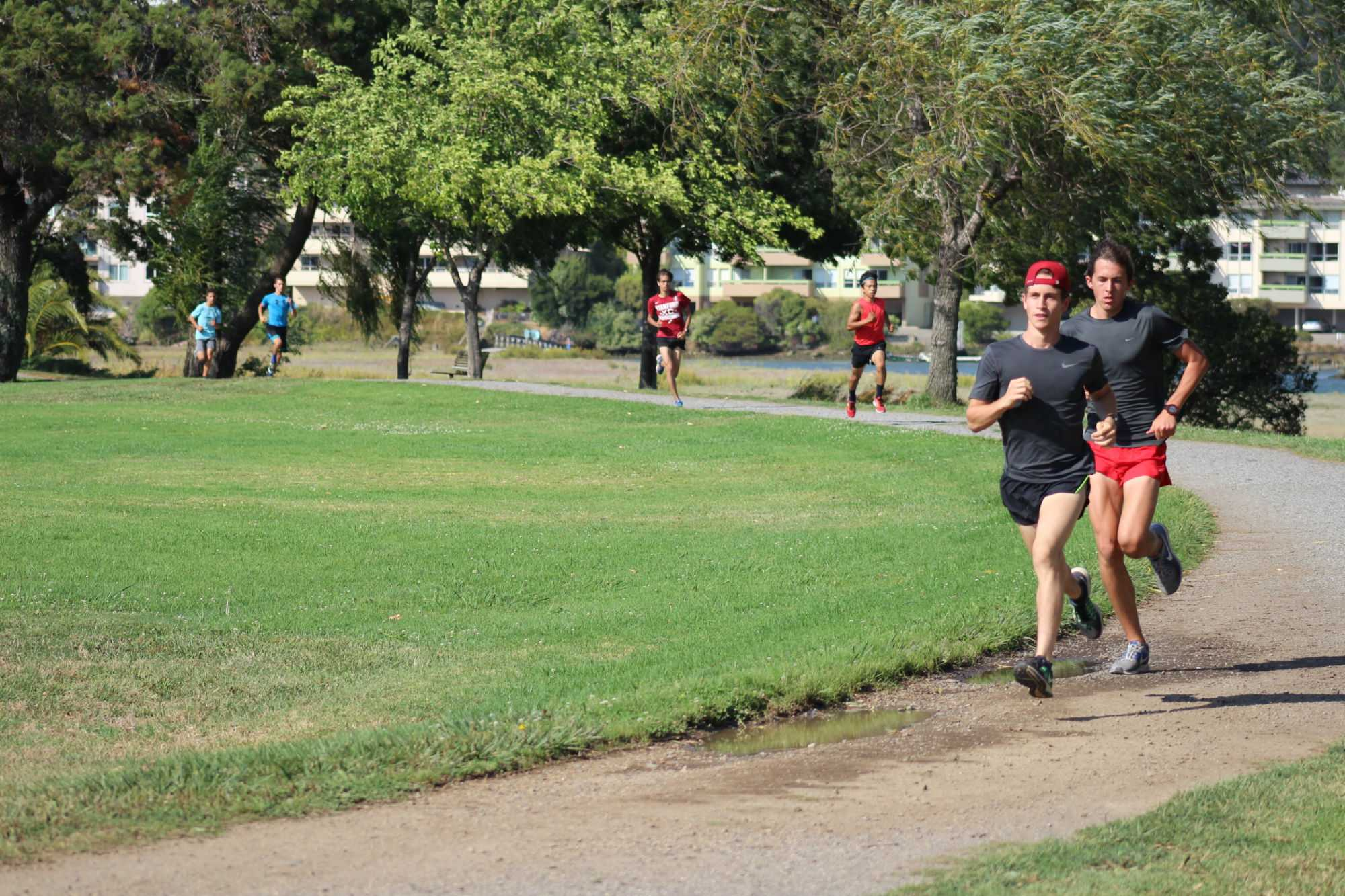 Cross country aims to keep up with past victories