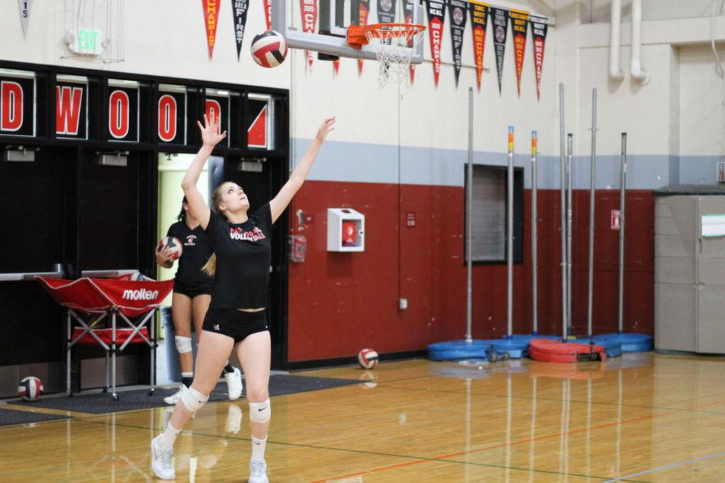 Serving the ball, volleyball player reaches high for power.