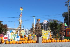 Located off Highway 101, Kevin's Strawberry Villa Pumpkin Patch displays much more than quality pumpkins.