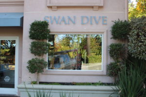 Swan Dive Consignment Store