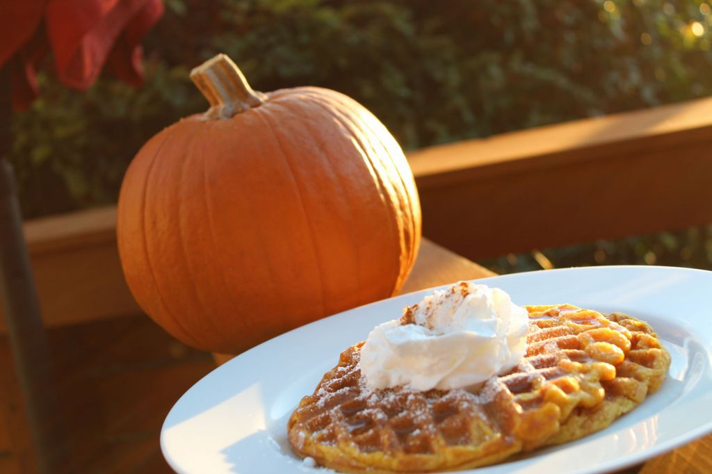Fall flavors: four recipes to LEAF you smiling