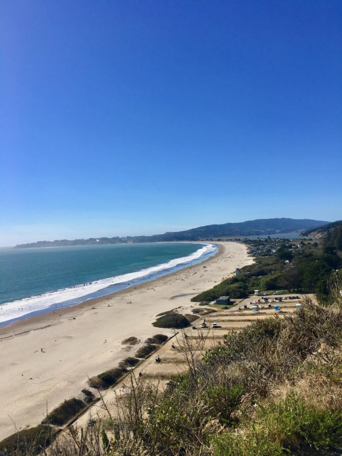 Mount Tam not only overlooks Marin's several towns, it also has a face on the water where hikers can gain a beautiful view of Stinson Beach like this one.