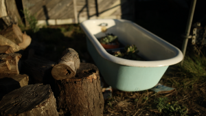 Slide ranch uses conventional material such as this bath tub for unconventional uses such as a planter