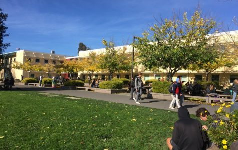 After a long week of rain, Redwood students return to the outdoors on a sunny afternoon.