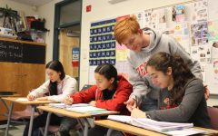 Finding the missing variable in disparities in math achievement