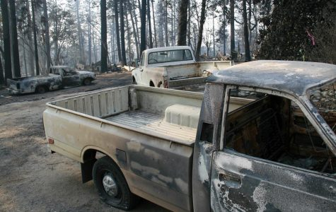 Paradise: Firsthand accounts from the fire