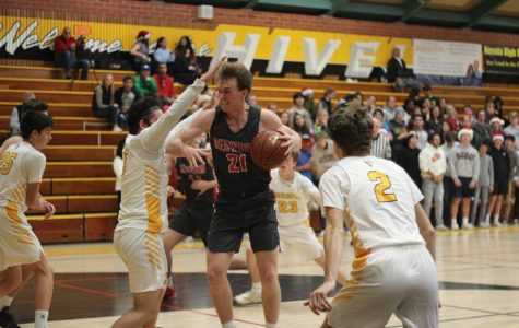 Boys' varsity basketball wins big over Novato high school