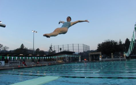 Redwood diving team plunges into season with ambitious attitude