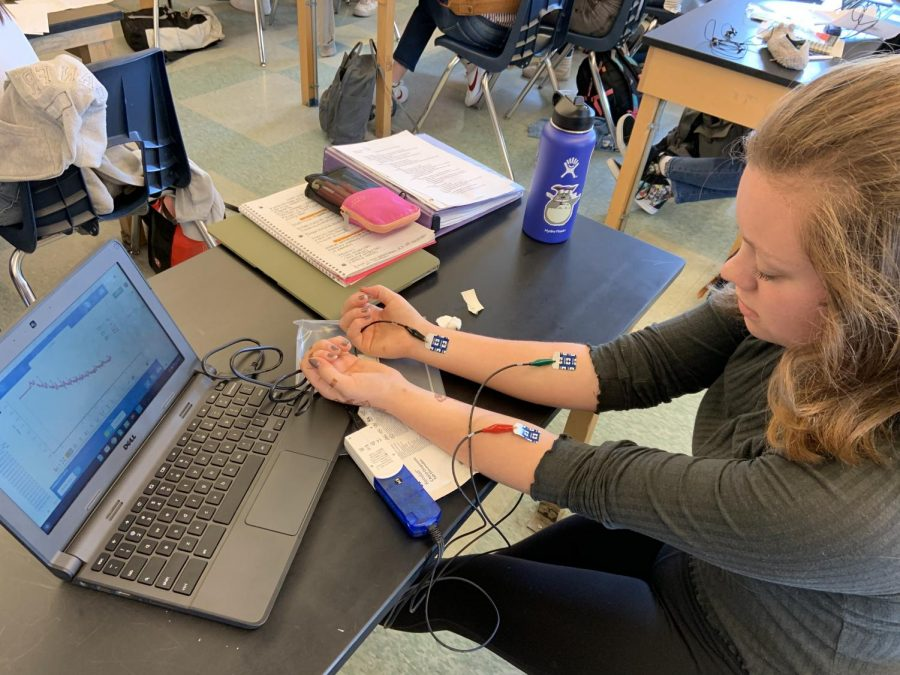 Physiology student, junior Natalie Norstad, uses an EKG to learn about heart contraction.