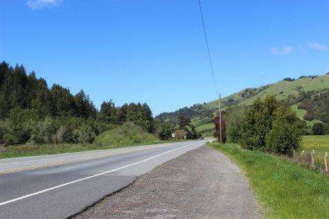 The wonders of Mt Tam: How local organizations are preserving Marin's prized beauty
