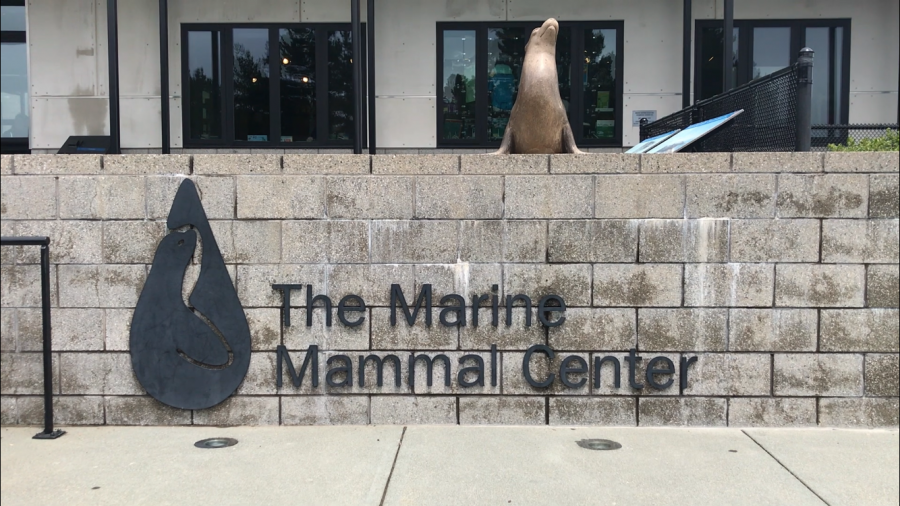 The Marine Mammal Center Entrance