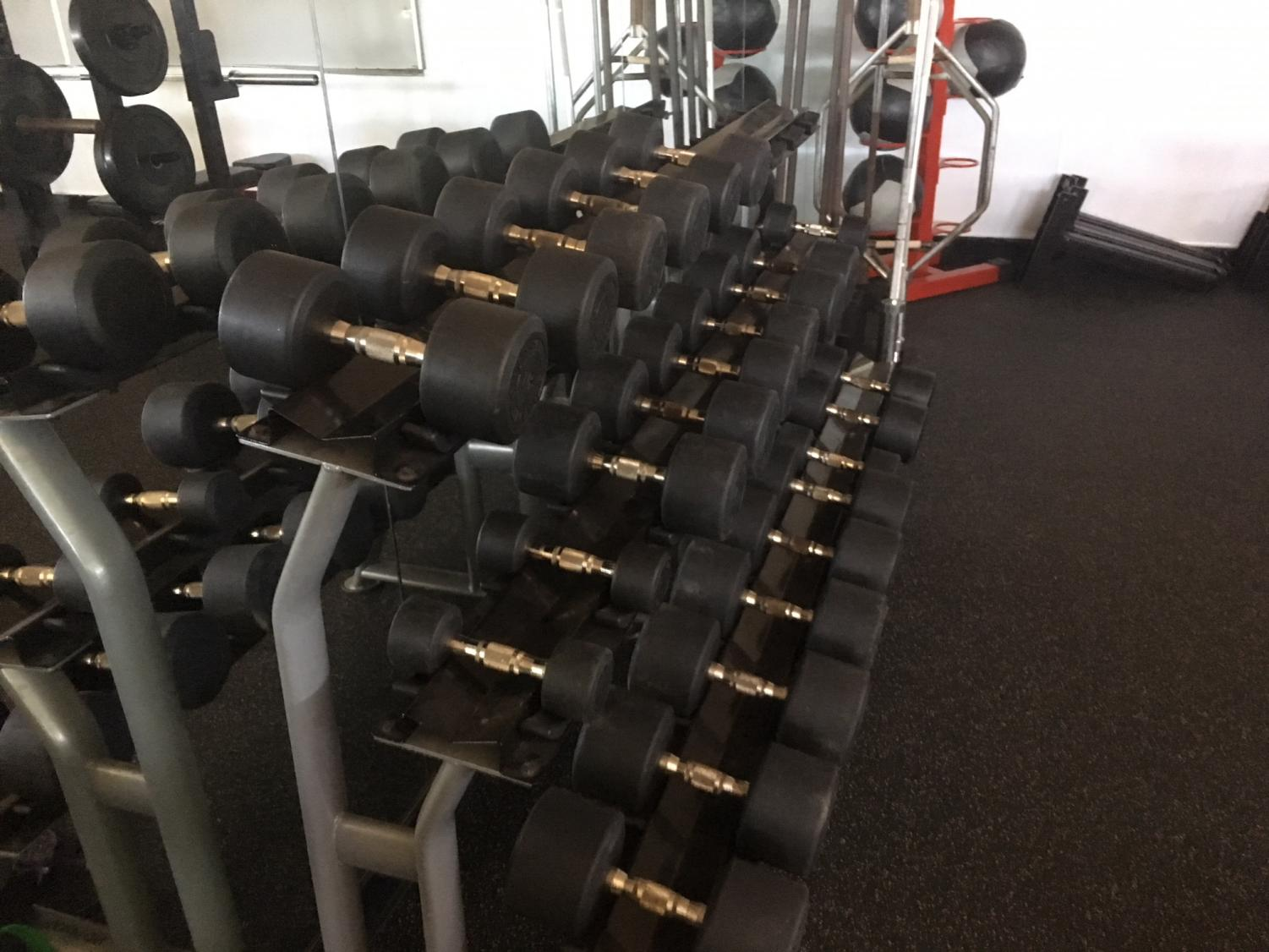 The+new+weight+room+has+double+the+amount+of+free+weights+as+the+old+room