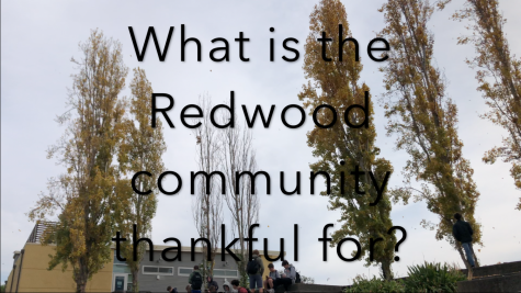 What is the Redwood community thankful for this Thanksgiving?