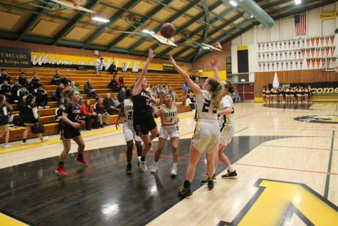 San Rafael left in the dog house after a crushing defeat by girls' varsity basketball team