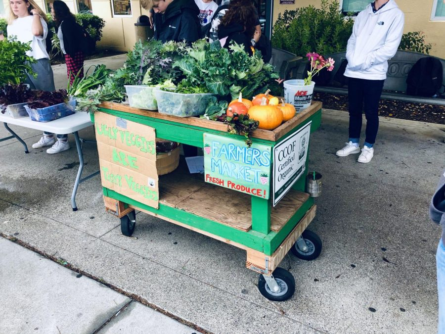 On Friday, Sustainable Agriculture students sell fresh produce made in the RHS Garden after school.