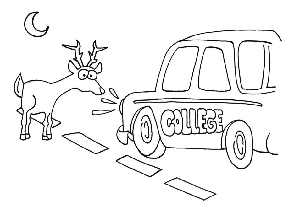 Deer in the headlights: why students are not to blame for college dropouts