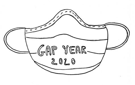 Take a moment to consider a COVID-19 gap year