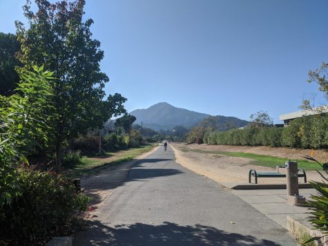 The bike path through Corte Madera and Larkspur is a great way to stretch your legs after class with a bike ride or jog.