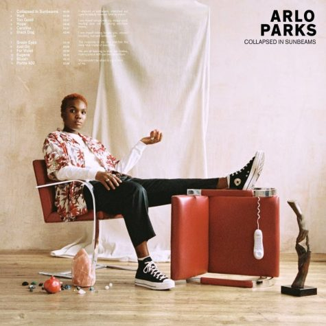 "Arlo Parks's debut ""Collapsed in Sunbeams"" truly shines"