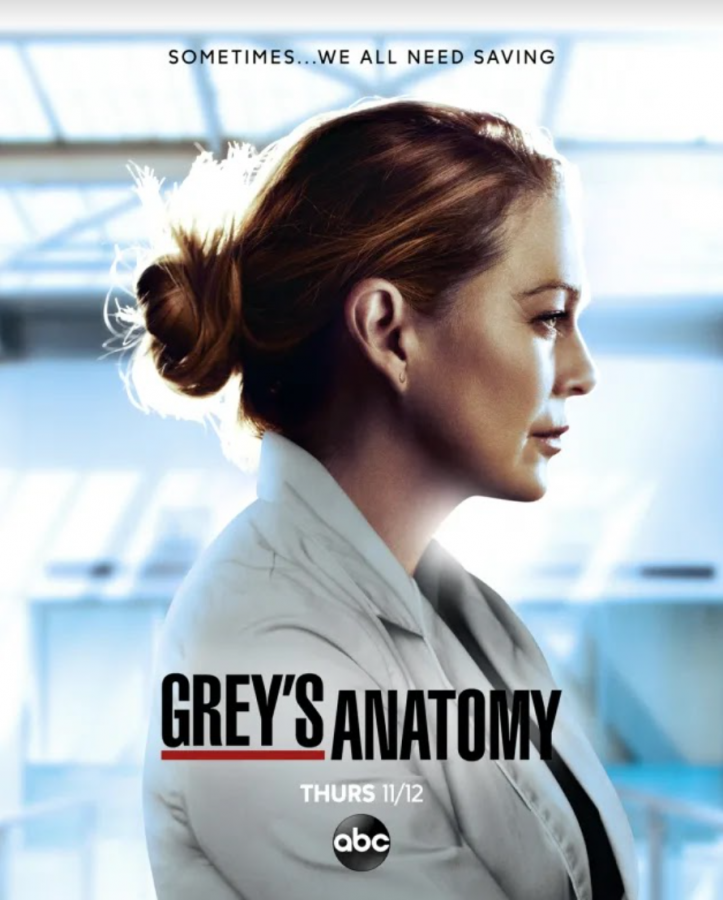 %22Grey%27s+Anatomy%22+season+17+promo+poster